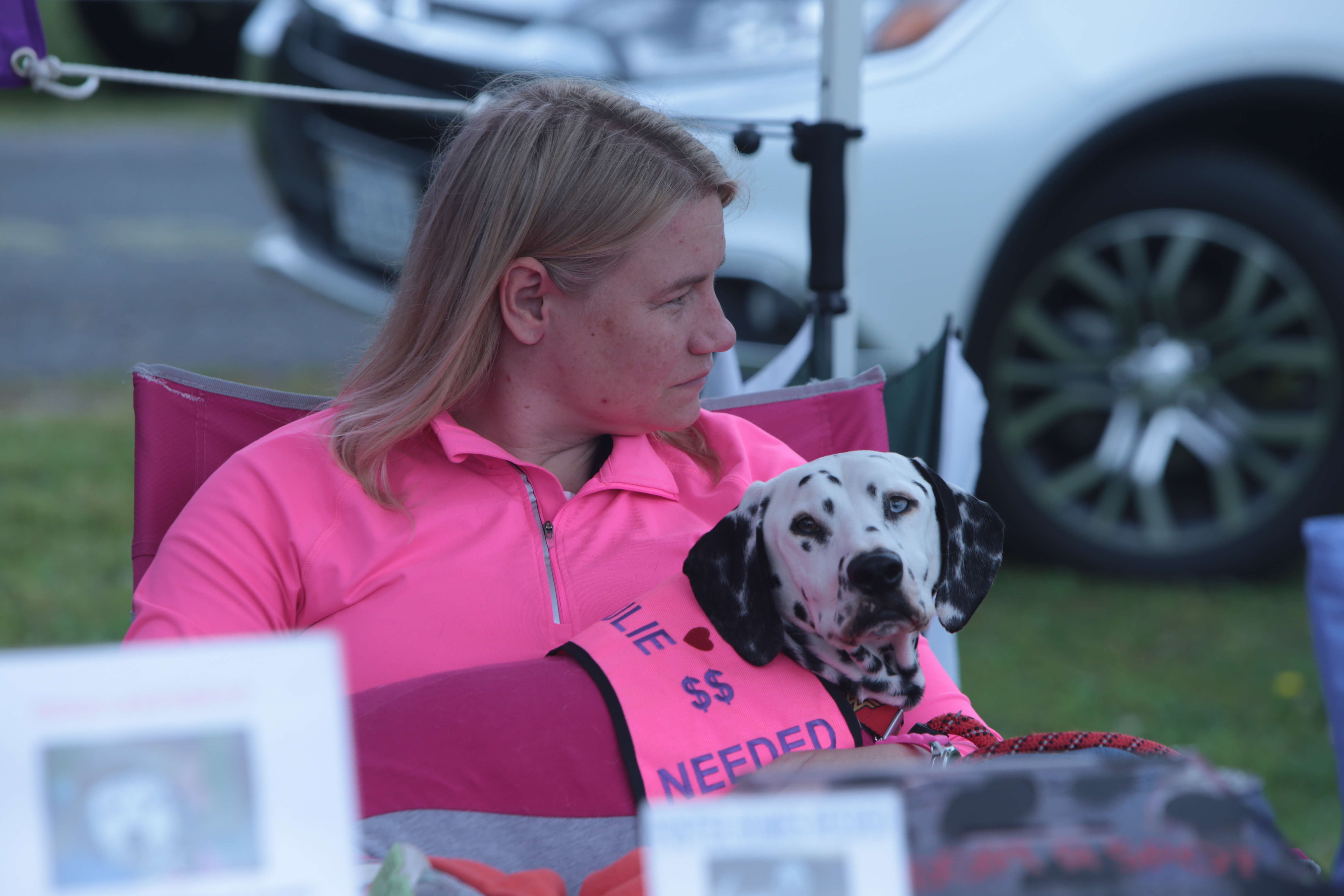 lady in pink with dalmation