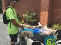 Dog Wash 2016 Image 6